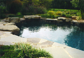naturalistic_pools_2