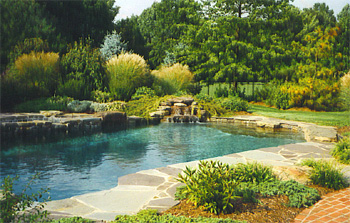 naturalistic_pools_3