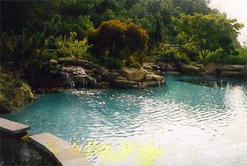 naturalistic_pools_1
