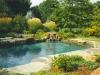 naturalistic_pools_3