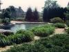 pool_wild_grass_lands_1